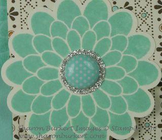 Button Buddies flower closeup