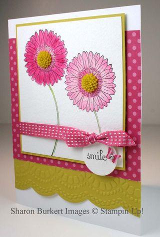 Reason to Smile primrose petals summer starfruitside