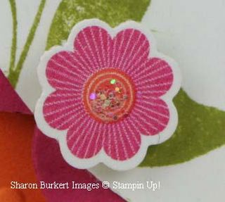Closeup floral dist flower