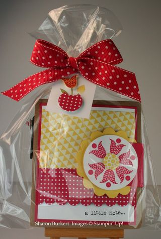 Packaged post its