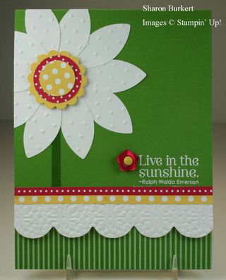 Live in the Sunshine flower