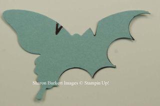 Bats 2nd