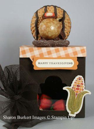 Turkey on a box