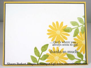 Secret garden thank you insude