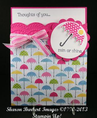 Rain or Shine DSP pocket card