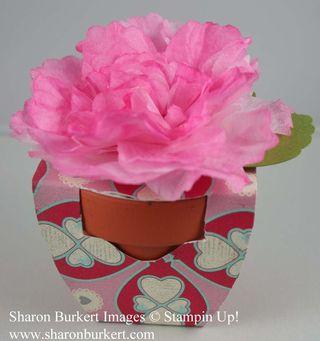 Creped flowerpot