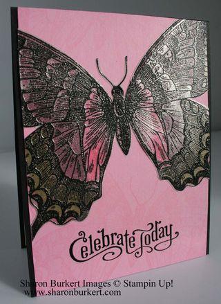 Swallowtail vellum pip side