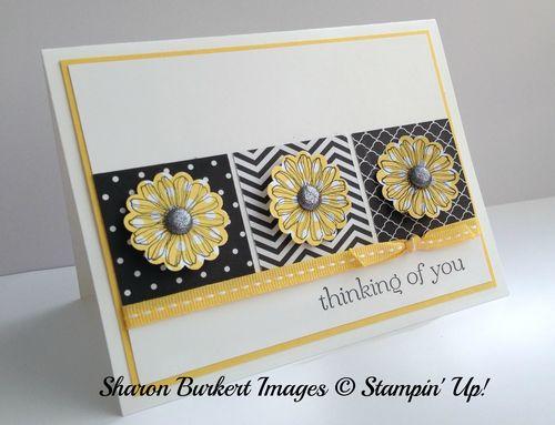 Best of Flowers Daffodil Delight