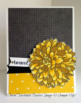 Regarding Dahlias Daffodil Delight Blendabilities