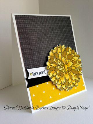 Regarding Dahlias Daffodil Delight Blendabilities side view