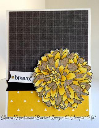 Regarding Dahlias Daffodil Delight Blandabilities Glittered