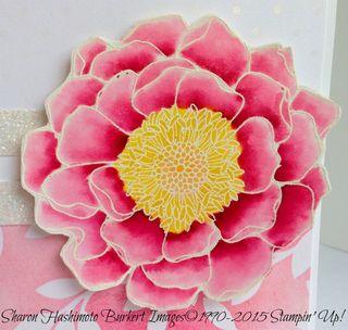 Blended Bloom close 15-03-28