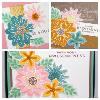 Flower Patch Card Box Set SP