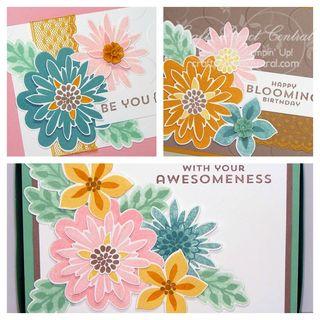 Flower Patch Card Box Set SP