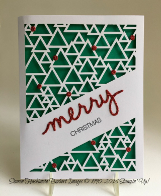 May MPP Christmas 6916