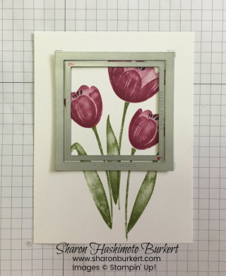FFFTranquilTulips2sharonburkert