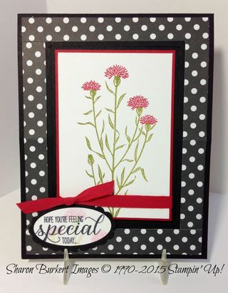 Wild About Flowers easel card 1