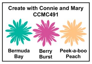 CCMC491