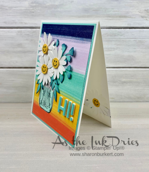 ASID-CuteFruitDaisy-side