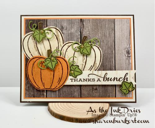 ASID-HarvestHellos-pumpkins