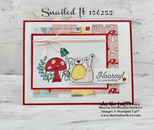 SnailedIt-CCMC653