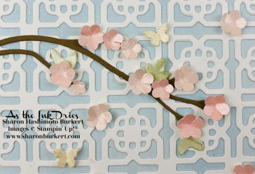 CherryBlossom-closeup