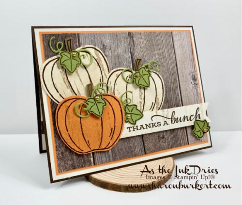 ASID-HarvestHellos-pumpkinside